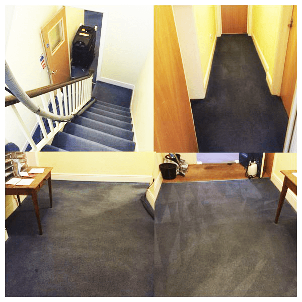 Commercial-Carpet-Cleaning-Kent (8)