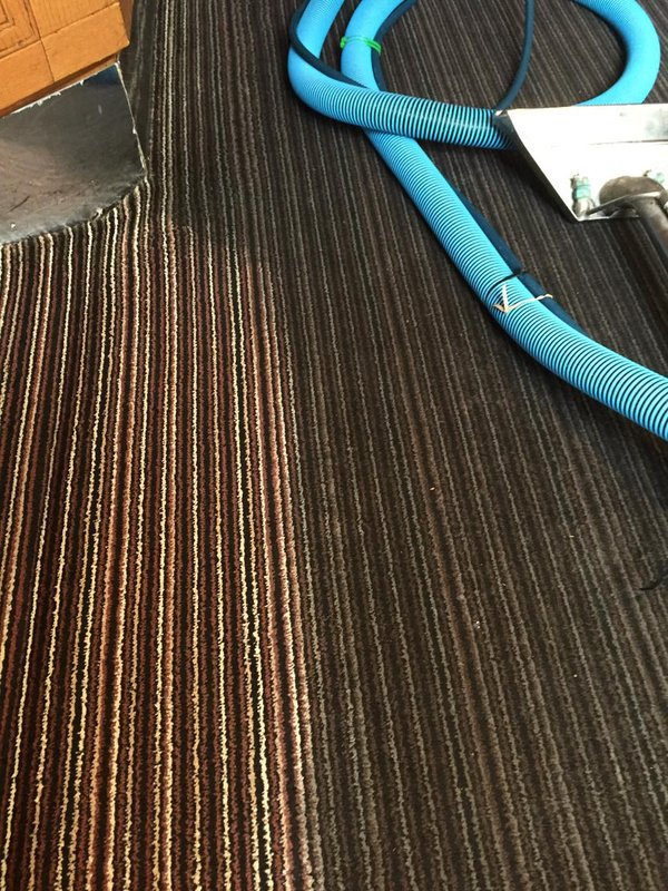 Commercial-Carpet-Cleaning-Kent (10)