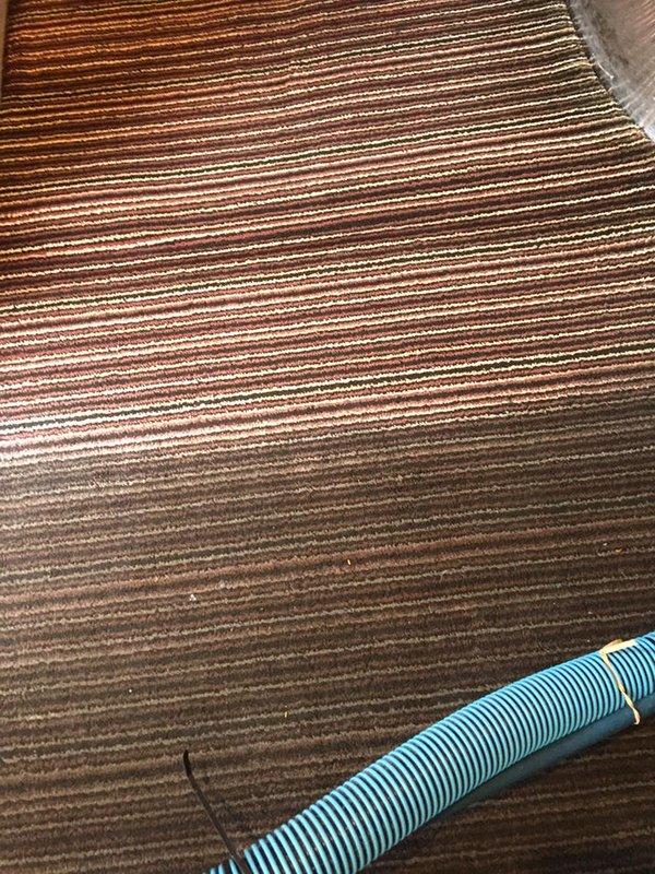 Commercial-Carpet-Cleaning-Kent (9)